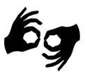 Обучение вождению глухонемых при помощи сурдопереводчика